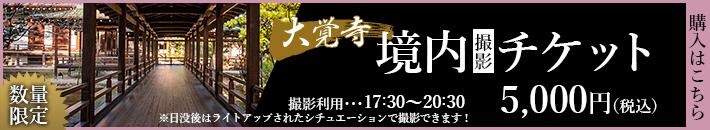 境内撮影チケット 5,000円