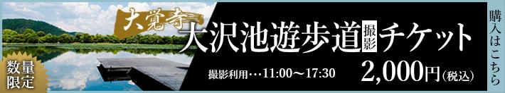 大沢池遊歩道撮影チケット 2,000円